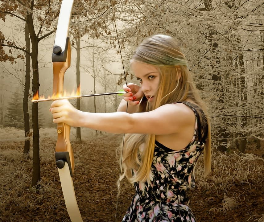 Tips for Choosing the Best Hunting Bow